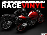 Ducati Monster 2013 with Racevinyl rim stickers with logos.
