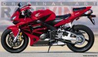 Ejemplo 01 Racevinyl Logos Kit Carenado Honda CBR 600 RR 2006 pegatina vinilo moto tuning fairing stickers vinyl motorcycle