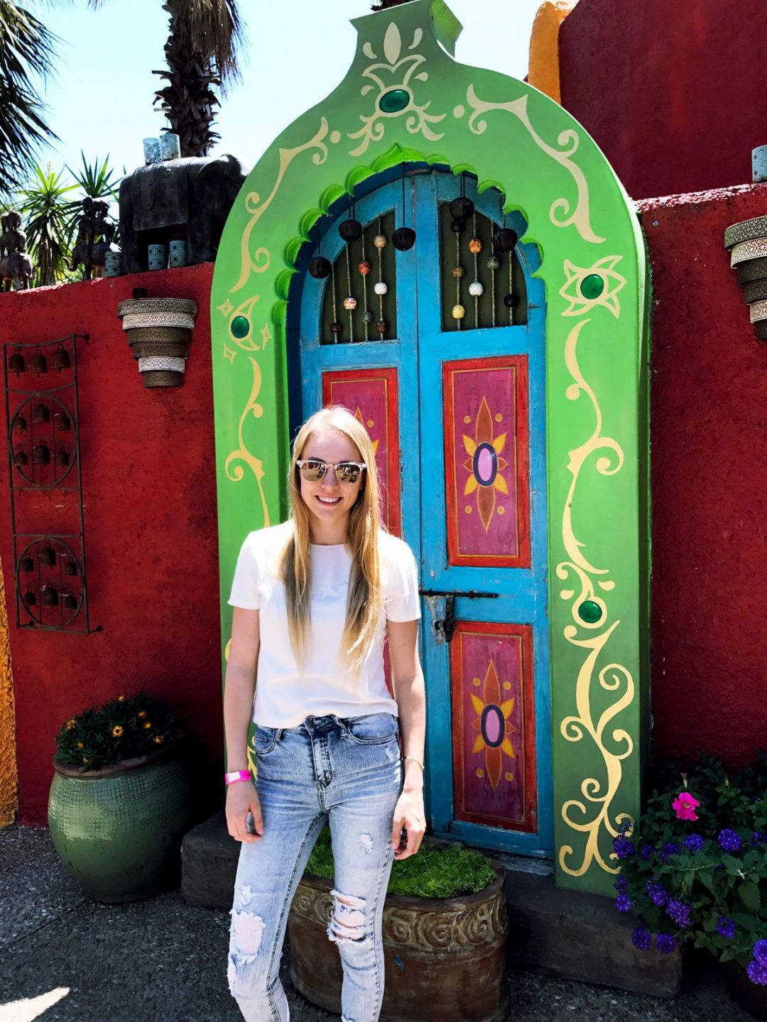 Busch Gardens Tampa Roller Coasters Review by Rachael Burgess