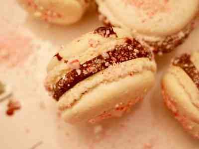 Peppermint Chocolate Macarons