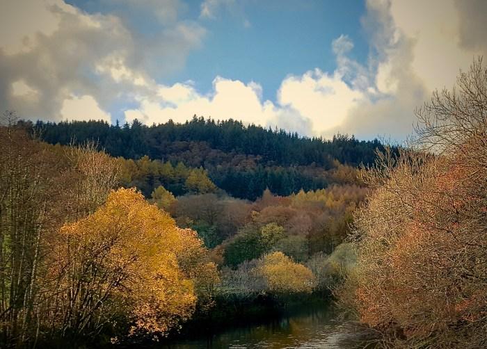 #MySundayPhoto - I Wish I Had A River
