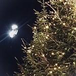 #MySundaySnapshot - Merry Christmas 51/52 (2019)