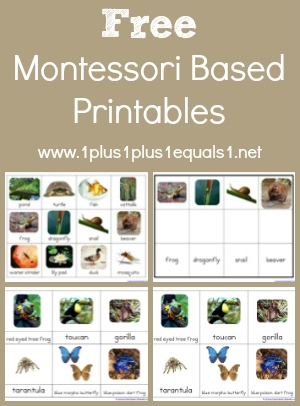 Preschool Worksheets » Montessori Preschool Worksheets - Free ...