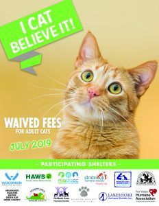 July 2019 waived cat fees