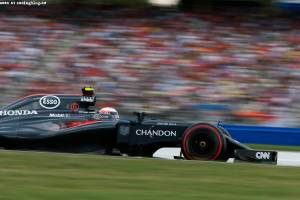 Jenson Button on track.