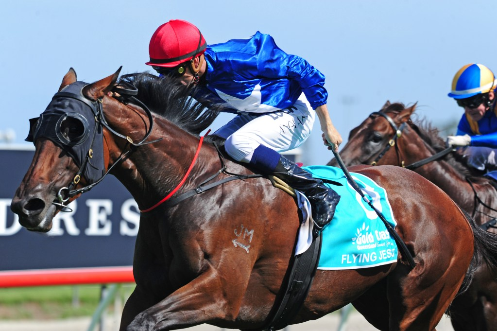 Image supplied with courtesy of Magic Millions