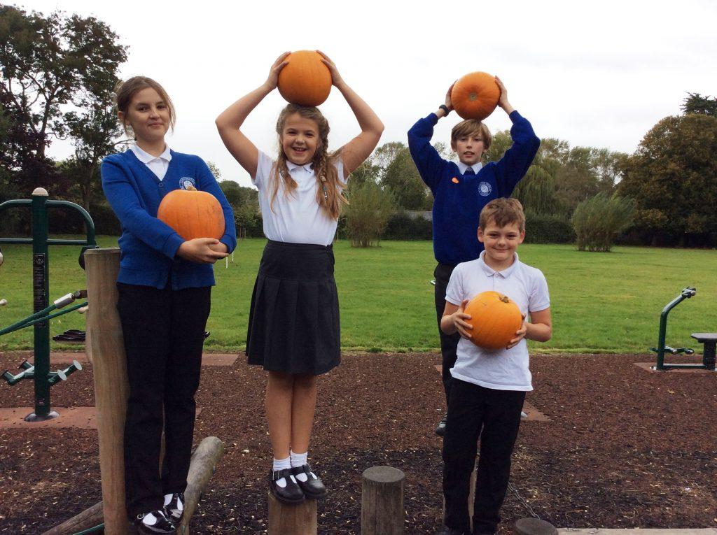 Y6 Pupils at Funtington Primary School