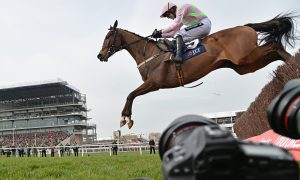 Vautour jumping the last