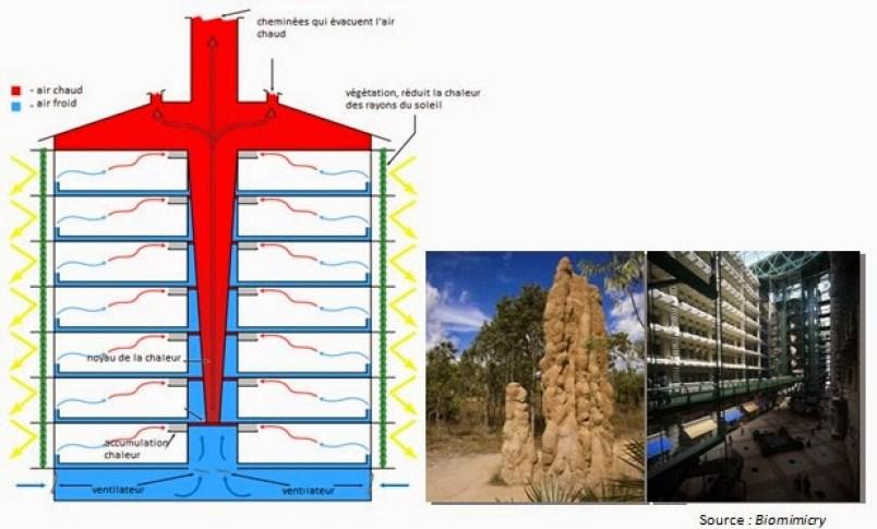 Detalhe do espaço aberto no Eastgate que também imita o sistema do cupinzeiro para regulação da temperatura local