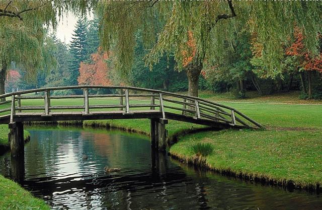 Construindo pontes