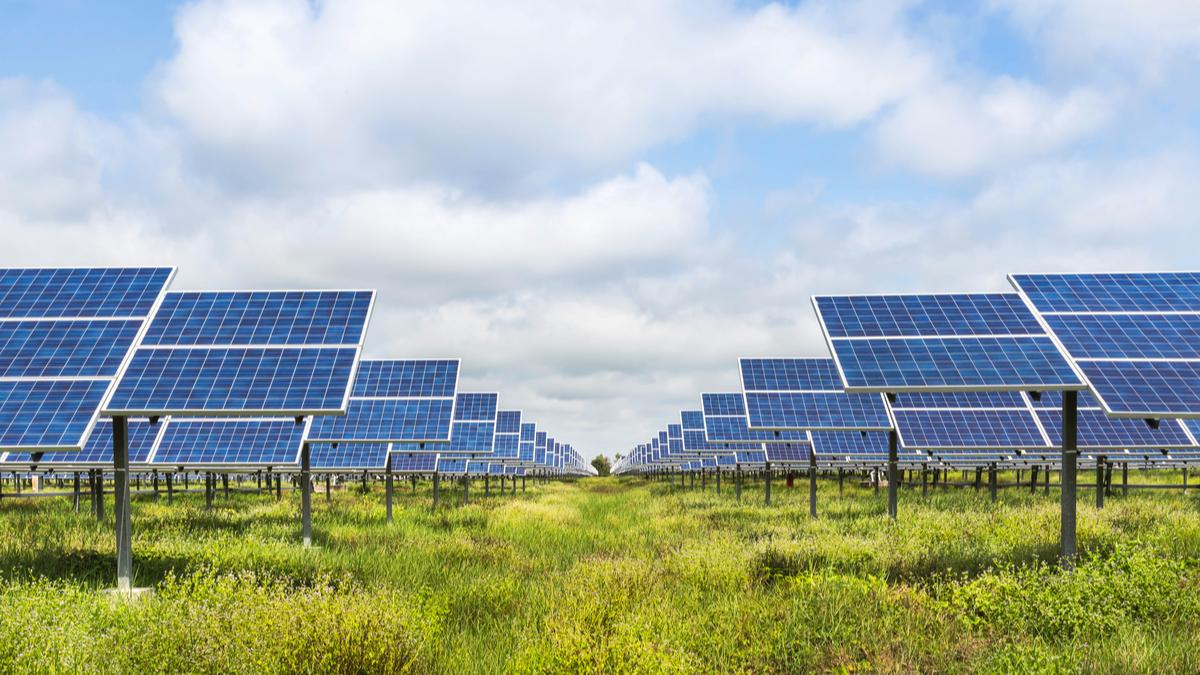 field of solar panels