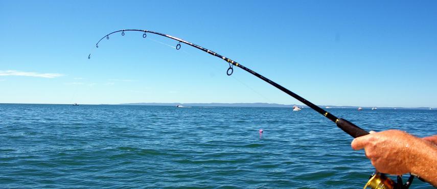 Θάλασσα & Ψάρεμα