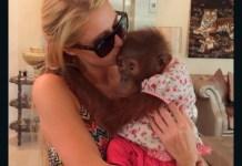 Instagram. Paris Hilton