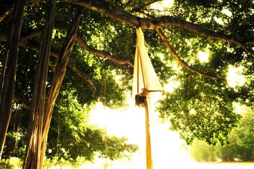 Aerial Silks Outdoor Performance
