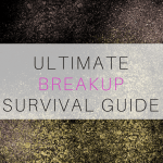 Breakup Survival Guide
