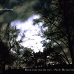 Anders Östberg – Down to my very last tear : :  Part 2: The sun went away
