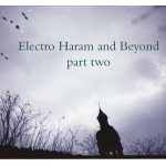 Electro Haram and Beyond, part two