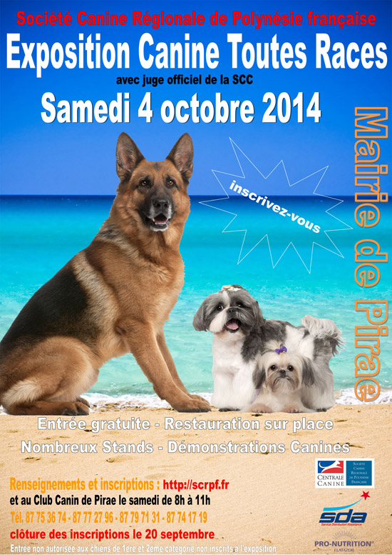 centrale canine categorie chien