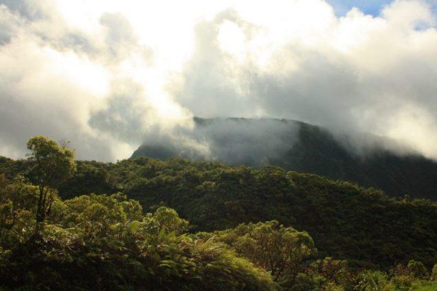 Montagne Tahiti