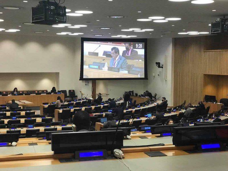 ONU-Quatrième commission-Fritch