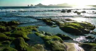 Alumna de UABCS Los Cabos gana 2do. lugar en concurso de fotografía