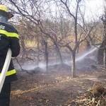 Se quemaron cerca de 100 hectáreas en Tolombón
