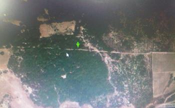 La zona de ubicación de las 32 hectáreas