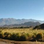 Más de la mitad  de las tierras de San Carlos y Molinos están en manos extranjeras