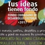 Tres proyectos de Cafayate recibirán dinero del Fondo Ciudadano de Desarrollo Cultural 2017