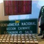 """Con el perro """"Tango"""" secuestran más de 54 kilos de cocaína en Cafayate"""