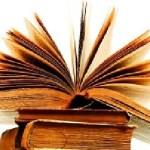 Se realiza en Cafayate la XXIX Feria del Libro de Autores de Salta