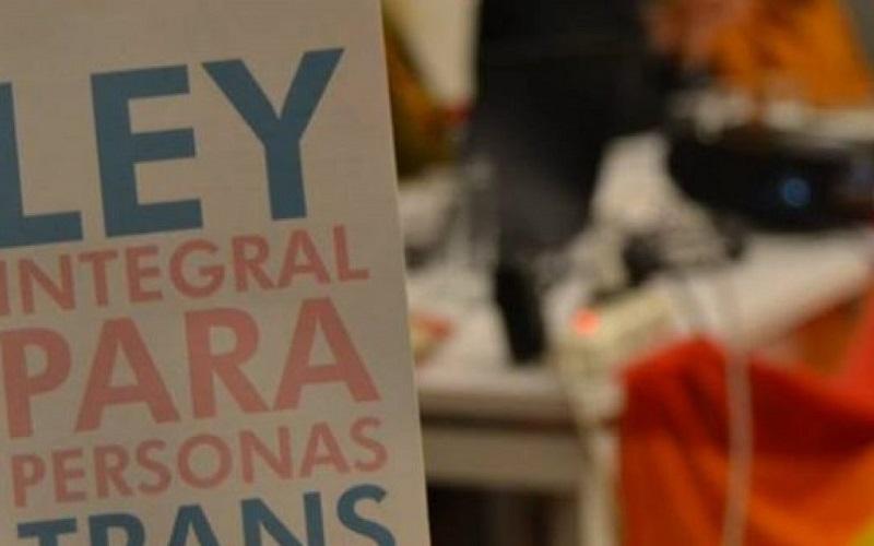 Ley trans: «El proyecto apela al acompañamiento de la familia»