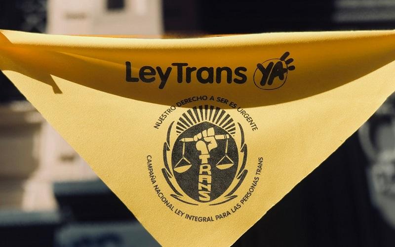 Ley Trans: «Estamos dándonos cuenta de que es algo histórico»