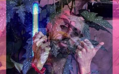 Muñe, proyecto solista de Damián Cacciali, se presenta en la Sala Camacuá