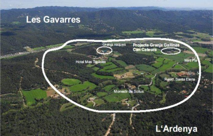 Zona on s'ha de construir segons el nou POUM de Santa Cristina d'Aro | Imatge de SOS Costa Brava
