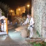 Niu de vespa al carrer Núria de Palafrugell   Imatge de l'Ajuntament de Palafrugell