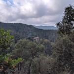 Santa Llúcia