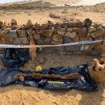 Troben l'esquelet d'un cetaci a Platja d'Aro | Imatge de Clàudia Auladell