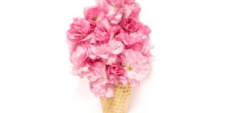 miquel-abras-prova-el-so-electronic-amb-minova-a-'flor-d'estiu'
