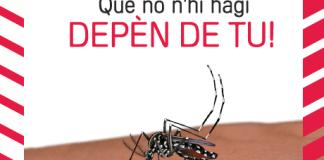 privat:-s'inicien-els-tractaments-contra-el-mosquit-tigre