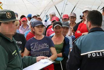 La Guardia Civil y la Policía Nacional de Rumania, han desarrollado una actividad conjunta, contra la explotación laboral en la campaña de recolección frutos rojos, en la provincia de Huelva