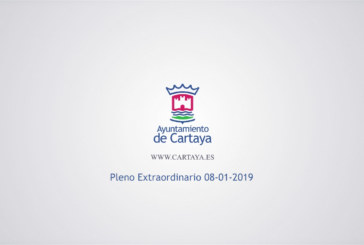 Pleno Municipal Extraordinario (08-01-2019)