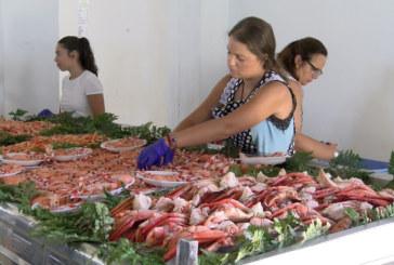 Todo un éxito la VIII Feria de la Gamba de la Hdad. de San Isidro Labrador