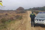 Almonaster la Real | La Guardia Civil investiga a nueve personas relacionados con extracciones de madera de forma ilegal en un monte público de la localidad