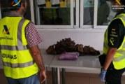 La Guardia Civil junto con dependencia de Aduanas, intervienen 13,5 kg. de cocaína oculta en el depósito de un vehículo que accedía al ferry con destino Gran Canarias