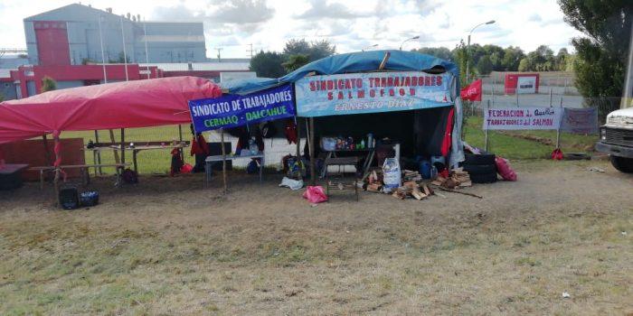 Castro: continúa huelga legal de trabajadores de empresa Salmofood.