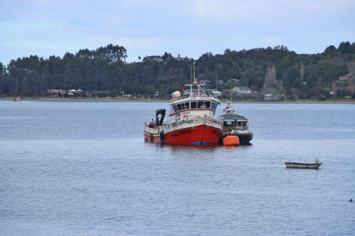 Quellón: amplían plazo de investigación en robo de salmones desde Aysén.
