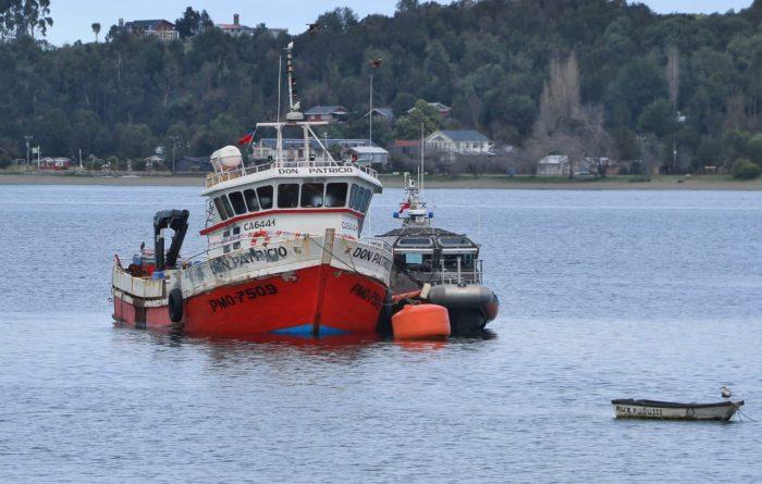 Quellón: 14 detenidos por hurto de salmón.