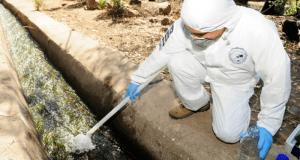 Ancud: Bidema investiga derrame de aguas servidas a la bahía para evaluar impacto ambiental.