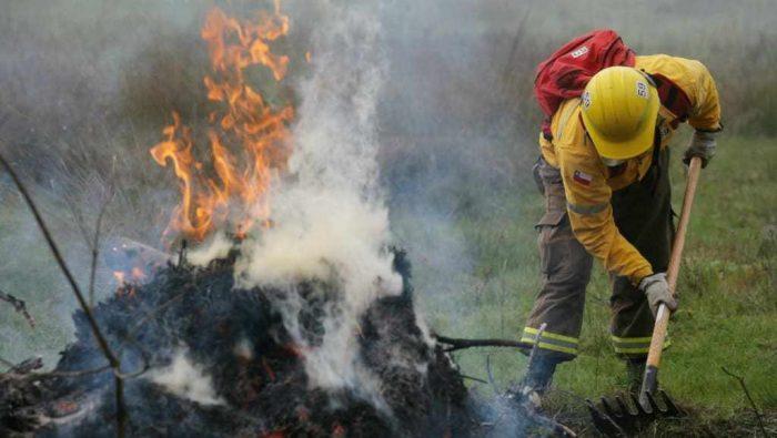 Regional: autoridades dan a conocer acciones preventivas para el combate de incendios forestales.
